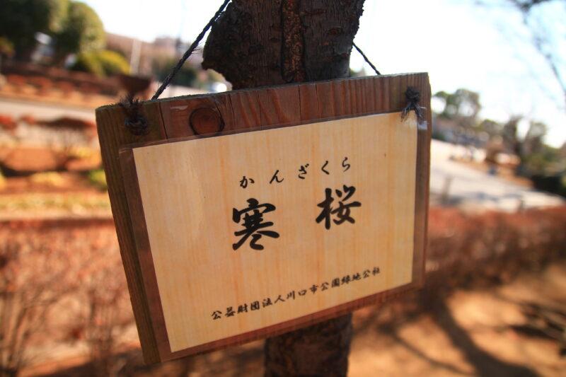 青木町公園 ジョギングコース