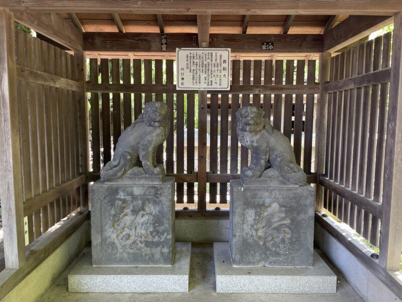 川口神社 狛犬