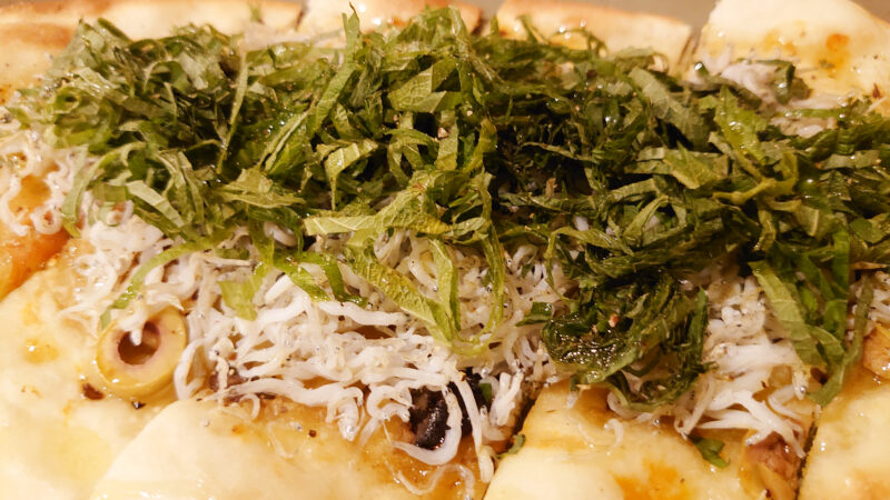 川口 スペイン料理 ネモ スペイン風ピザ