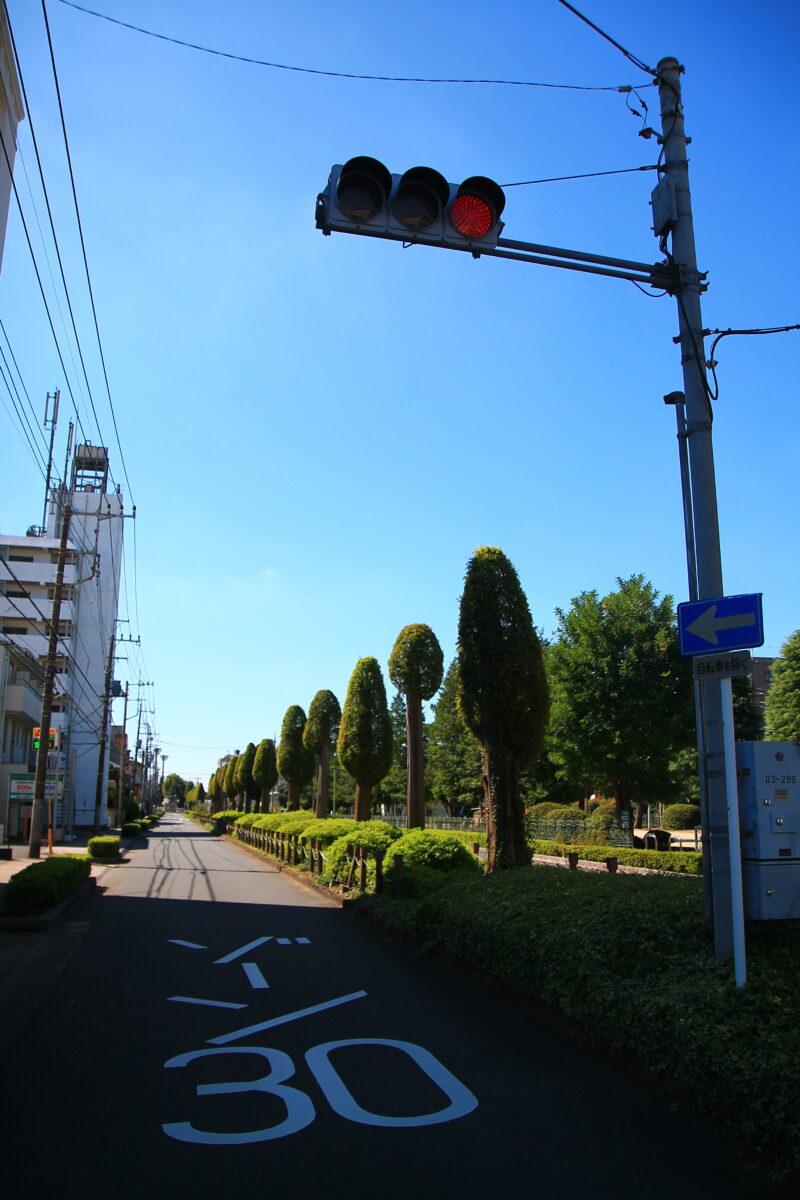 中央通り公園の向かい